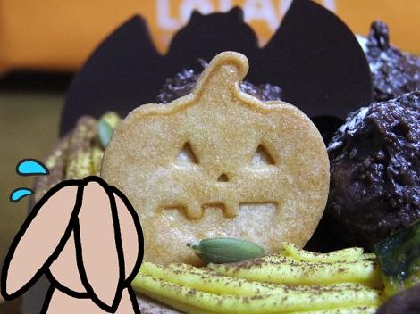かぼちゃのお化けとモカちゃん.jpg