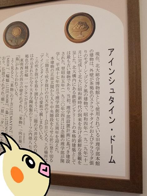 アインシュタイン・ドーム.jpg