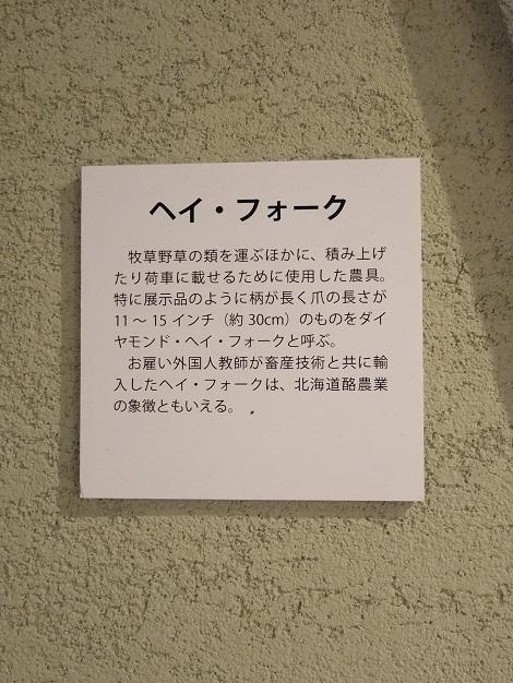 北海道大学総合博物館 12-1.JPG