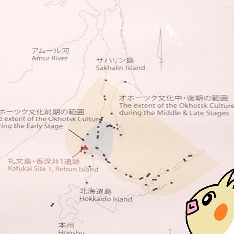 北海道大学総合博物館 15-2.jpg