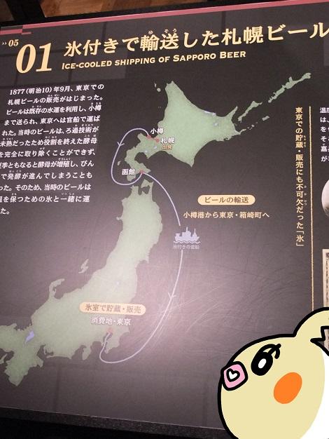 氷付きで輸送した札幌ビールを詳しく勉強しているピヨめぐモカ.jpg