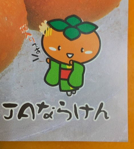 JAならけん ハウス種なし柿 刀根早生 秀 2S 18個入 柿奈さん.jpg
