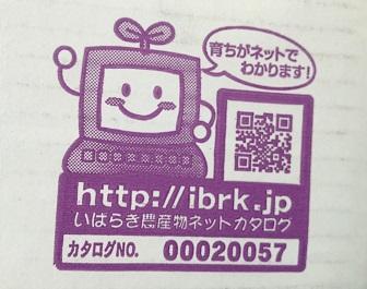 ぴーまんくん4.jpg
