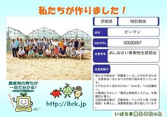 ぴーまんくん6.jpg