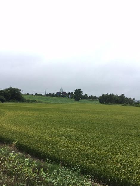 ましゅれ長沼店 1-1.jpg