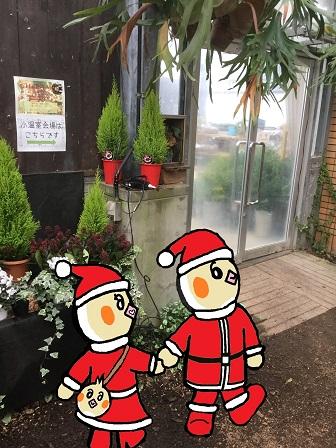 クリスマスディスプレイ展  ピヨめぐモカ ピヨのポシェット サンタの服 手つなぎ.jpg