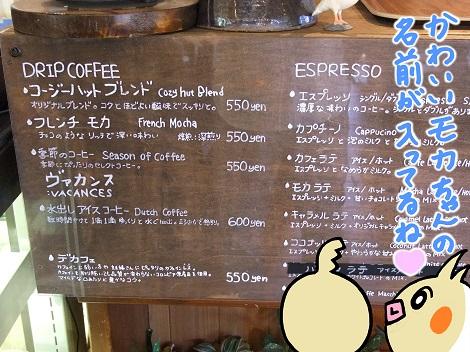 コージーハット3-4.JPG
