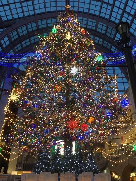 サッポロファクトリー ジャンボクリスマスツリー 光のショータイム 点灯式2.jpg