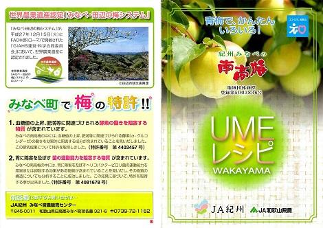 ピヨめぐモカ JA紀州 JA和歌山県農 南高梅 2.jpg