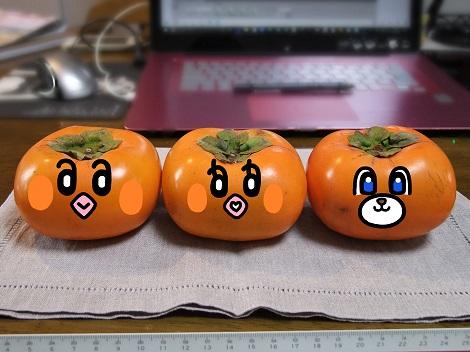 ピヨめぐモカの顔の柿2.jpg