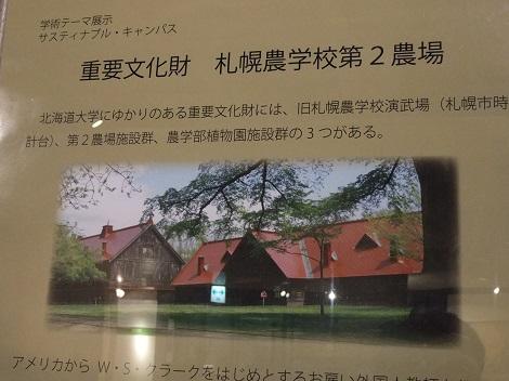 北海道大学総合博物館 13-5.JPG