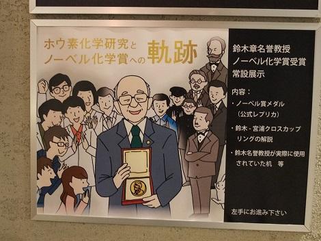 北海道大学総合博物館 2-2.JPG
