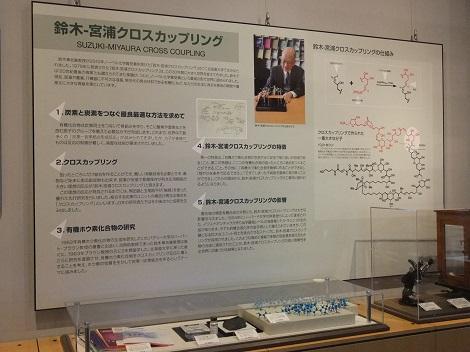 北海道大学総合博物館 2-3.JPG