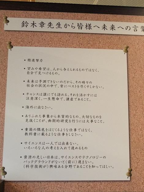 北海道大学総合博物館 2-4.JPG