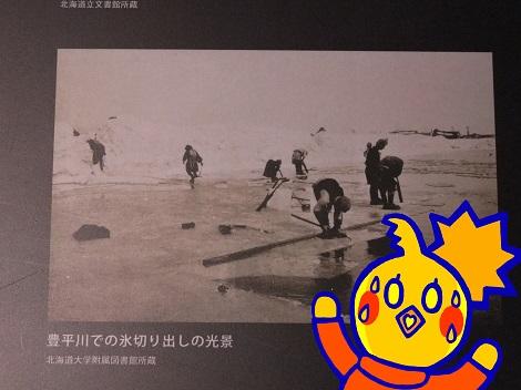 豊平川での氷切り出しの光景に驚く めぐ.jpg