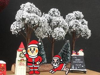 12月 クリスマス ピヨ モカ サンタクロース 2015.jpg