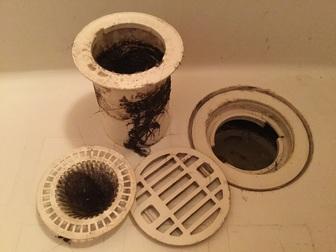 浴室排水口 汚い.jpg